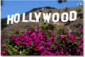 Hollywood_sign_flowers_shadow